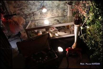 morgane-champignon-en-champagne-21